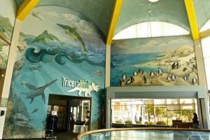 Ocean Mural - 3